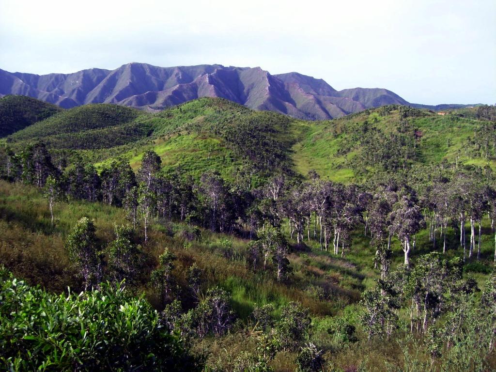 Outremer Funding lance ses premiers projets en Nouvelle-Calédonie
