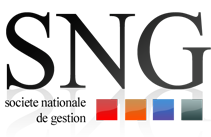 SNG IMMOBILIER